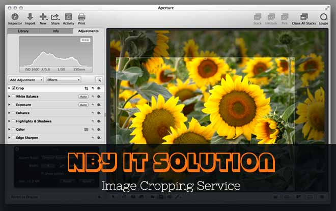 Image Cropping Service